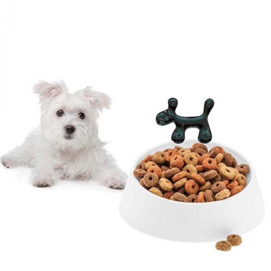Gamelle design pour chien