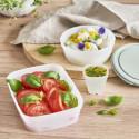 Boîte alimentaire en matériau biologique et renouvelable 0,5 L