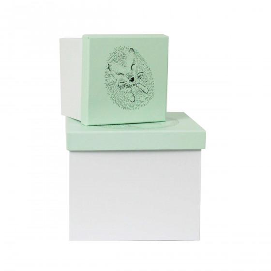 acheter en ligne fab8f 7a5cc 2 boîtes de rangement pour enfant vert d'eau