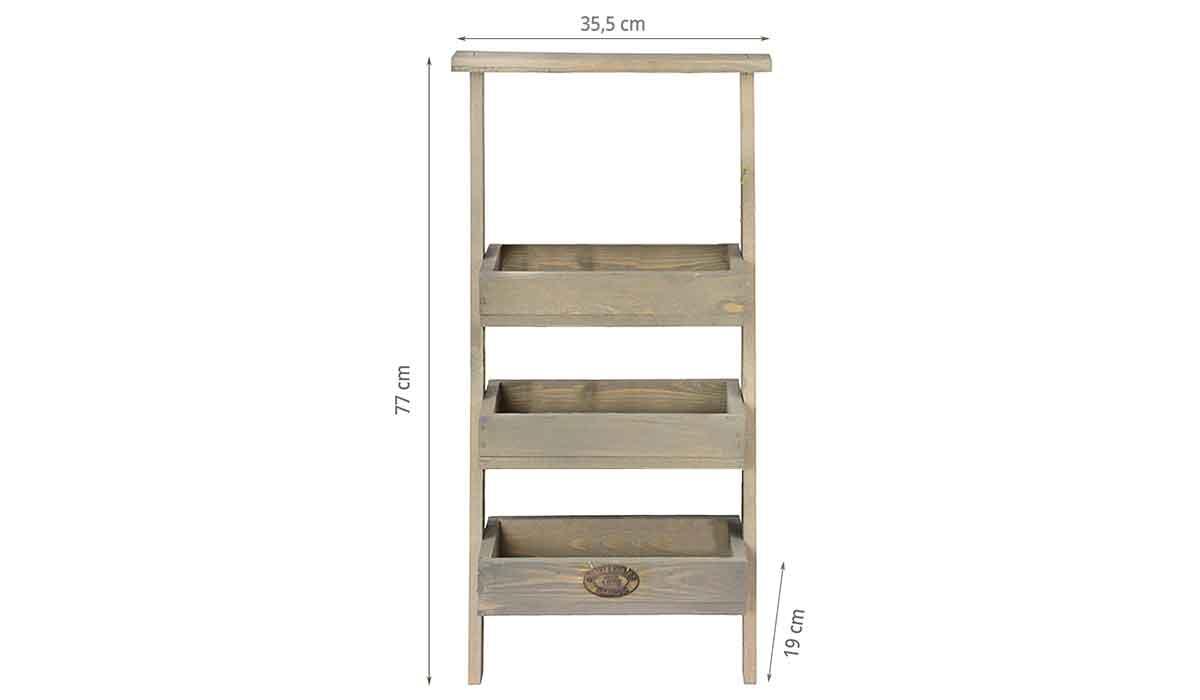 dimensions de l'étagère à plantes échelle