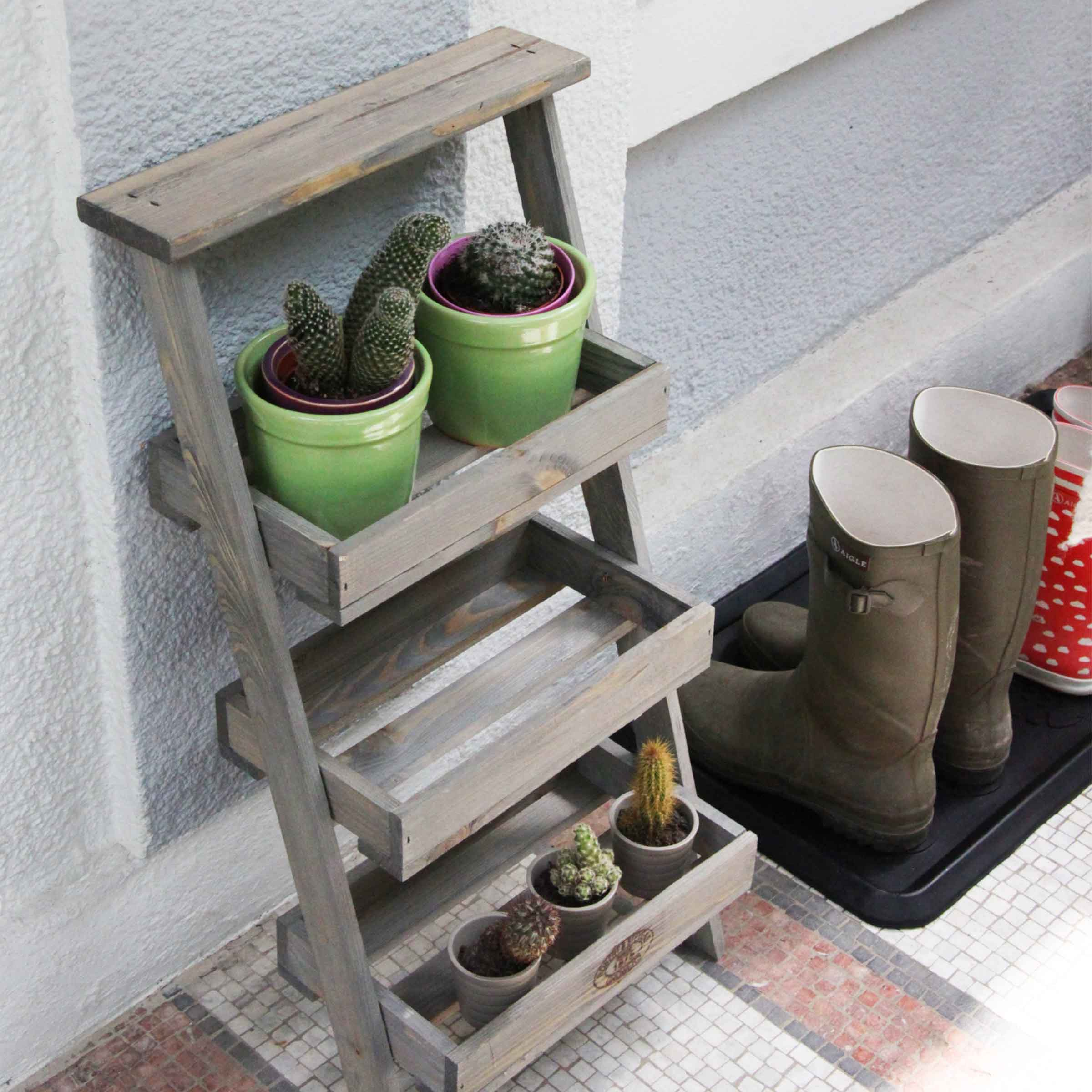 Infos et astuces de l'étagère à plantes